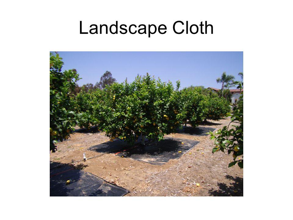 Landscape Cloth