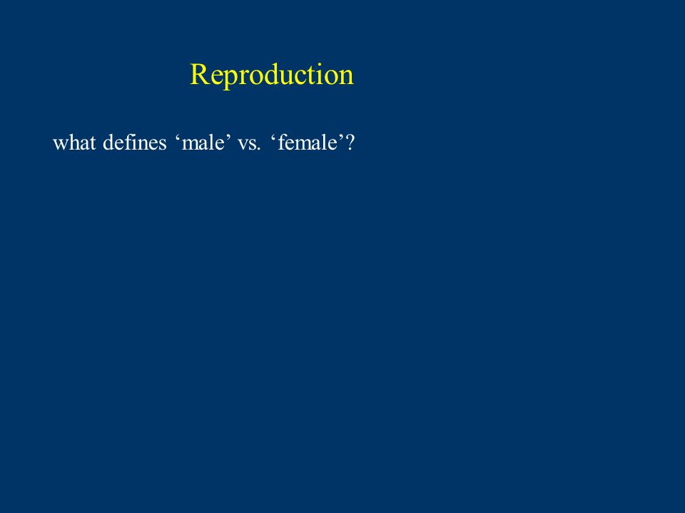 Reproduction what defines male vs. female?