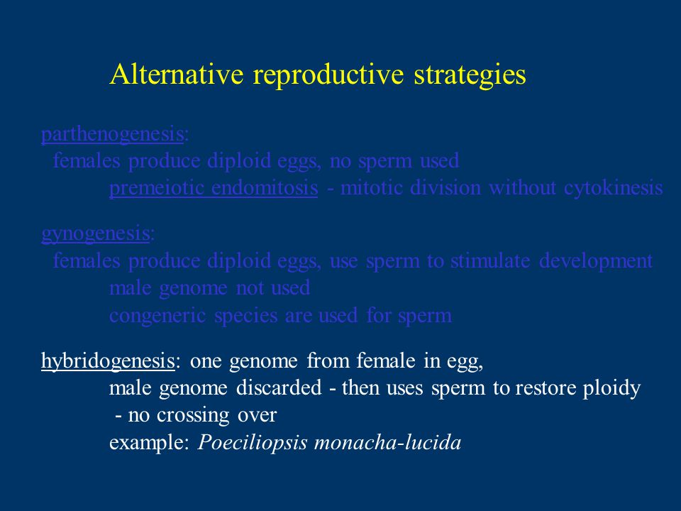 Alternative reproductive strategies parthenogenesis: females produce diploid eggs, no sperm used premeiotic endomitosis - mitotic division without cytokinesis gynogenesis: females produce diploid eggs, use sperm to stimulate development male genome not used congeneric species are used for sperm hybridogenesis: one genome from female in egg, male genome discarded - then uses sperm to restore ploidy - no crossing over example: Poeciliopsis monacha-lucida