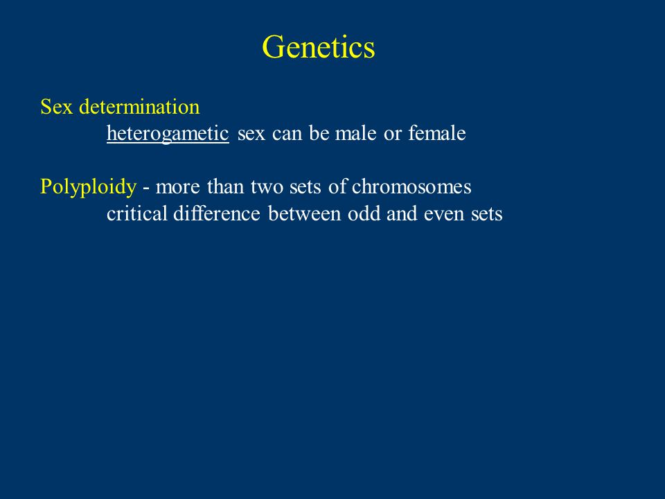Sex determination heterogametic sex can be male or female Polyploidy - more than two sets of chromosomes critical difference between odd and even sets Genetics