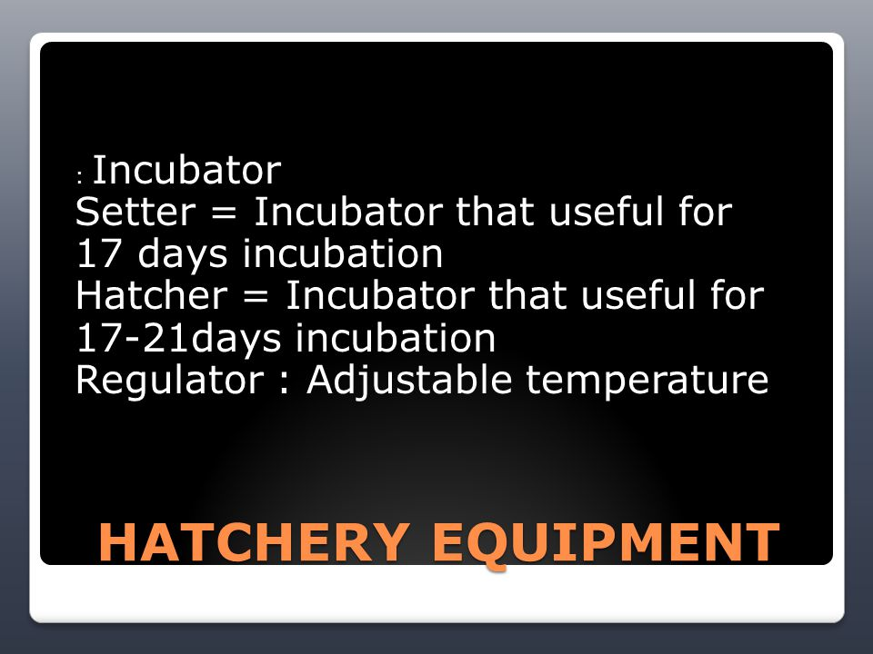 HATCHERY EQUIPMENT : Incubator Setter = Incubator that useful for 17 days incubation Hatcher = Incubator that useful for 17-21days incubation Regulator : Adjustable temperature