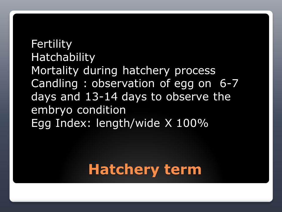 HATCHERING PROCESS: * NATURAL & ARTIFICIAL Hatchering Process : 1.
