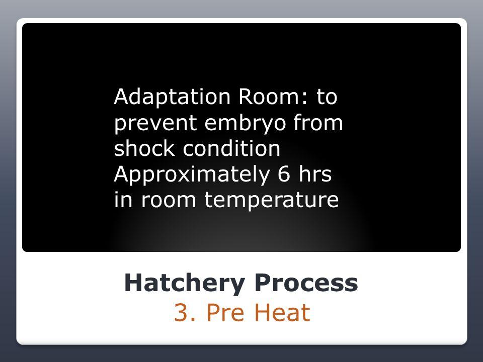 Hatchery Process 4.