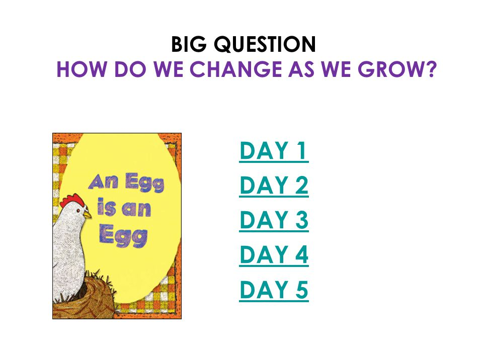 BIG QUESTION HOW DO WE CHANGE AS WE GROW DAY 1 DAY 2 DAY 3 DAY 4 DAY 5