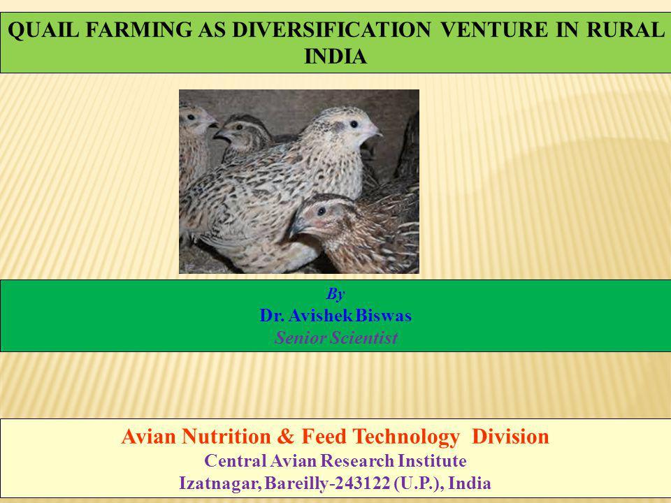 Introduction Class:Aves Family:Phasianidae Genus:Coturnix Scientific name:Coturnix coturnix Japonica Hindi name:Bater