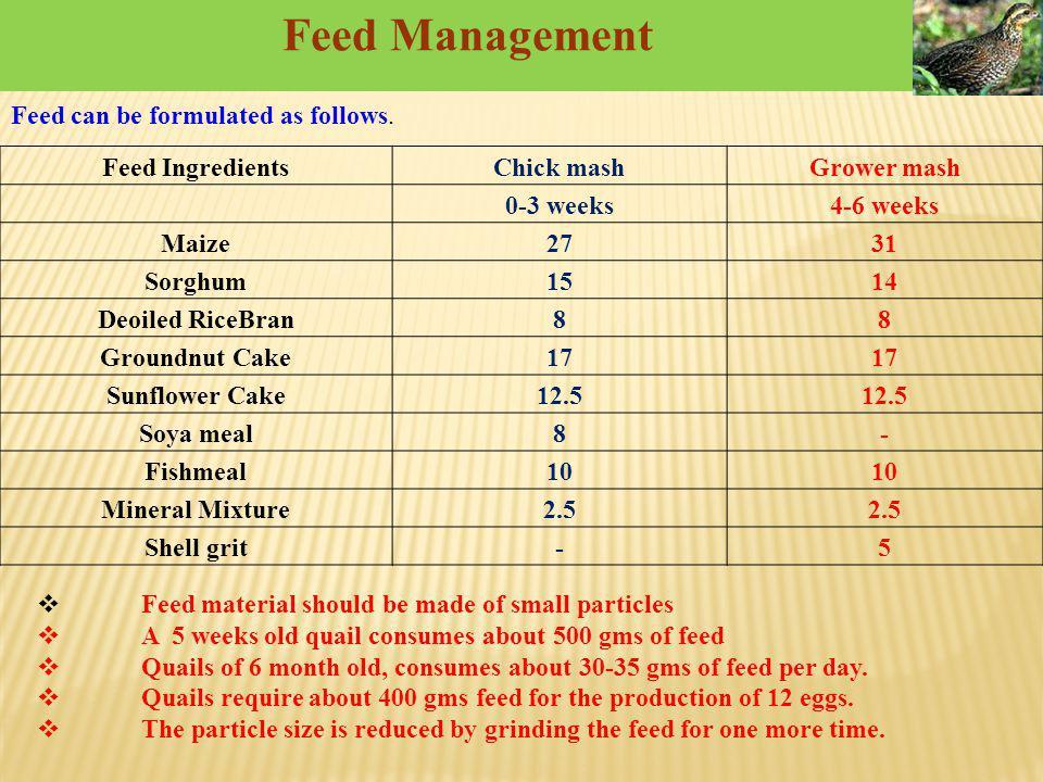 Feed Management Feed IngredientsChick mashGrower mash 0-3 weeks4-6 weeks Maize2731 Sorghum1514 Deoiled RiceBran88 Groundnut Cake17 Sunflower Cake12.5