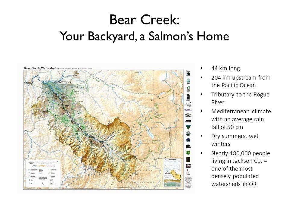 Bear Creek: Your Backyard, a Salmons Home 44 km long 204 km upstream from the Pacific Ocean Tributary to the Rogue River Mediterranean climate with an average rain fall of 50 cm Dry summers, wet winters Nearly 180,000 people living in Jackson Co.