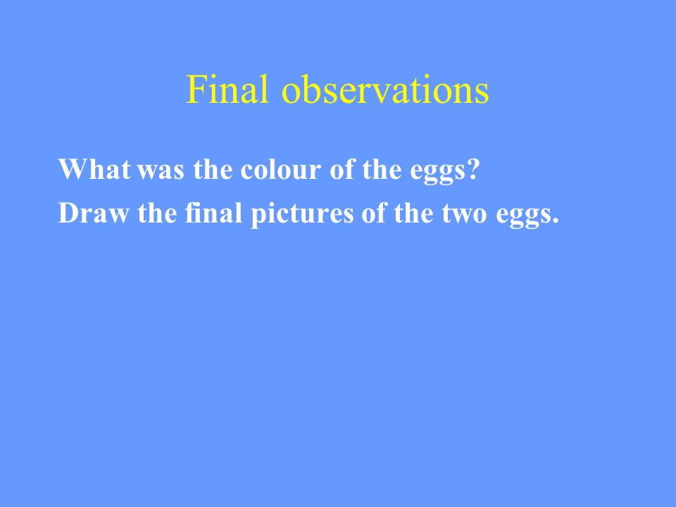 Final observations What was the colour of the eggs? Draw the final pictures of the two eggs.