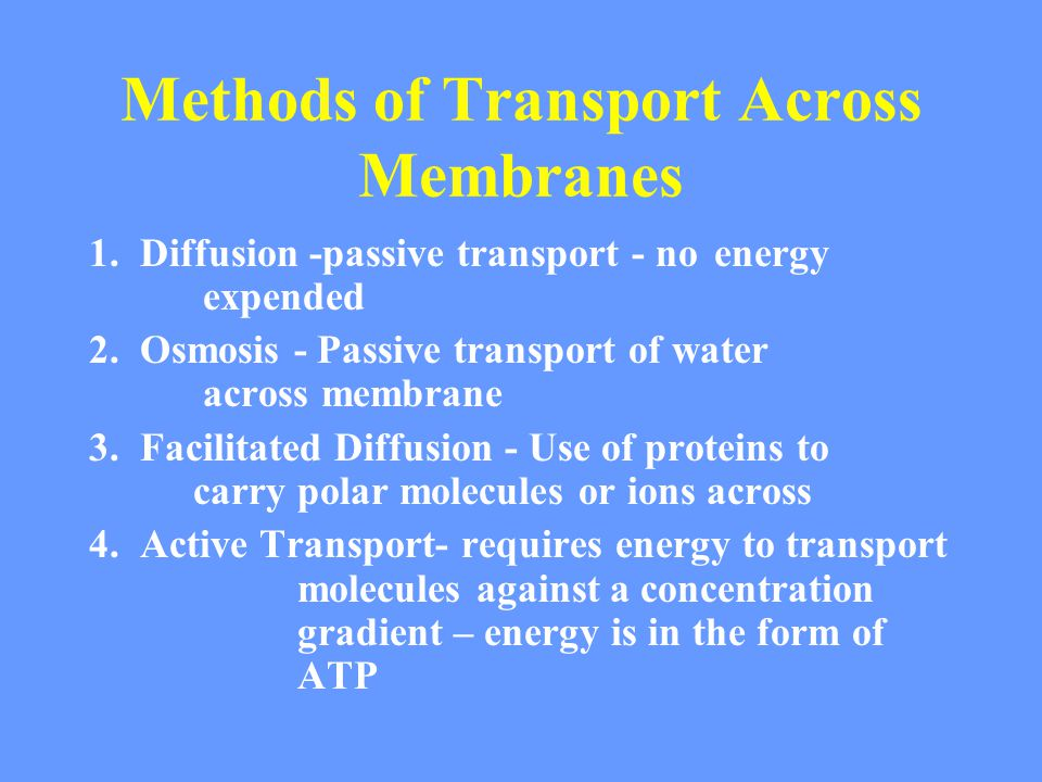 Methods of Transport Across Membranes 1. Diffusion -passive transport - no energy expended 2.
