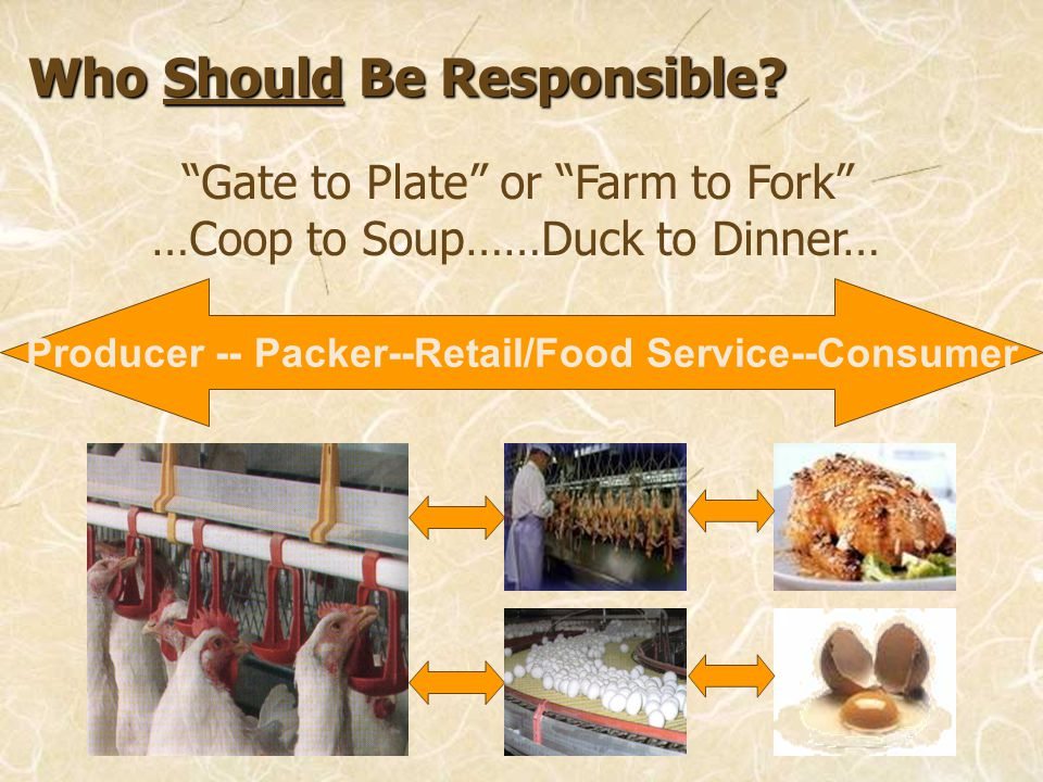 Who Should Be Responsible? Gate to Plate or Farm to Fork …Coop to Soup……Duck to Dinner… Producer -- Packer--Retail/Food Service--Consumer