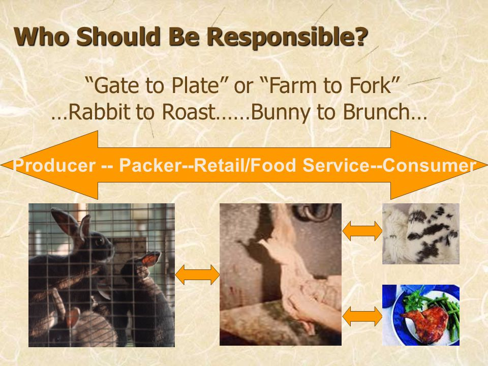 Who Should Be Responsible? Gate to Plate or Farm to Fork …Rabbit to Roast……Bunny to Brunch… Producer -- Packer--Retail/Food Service--Consumer
