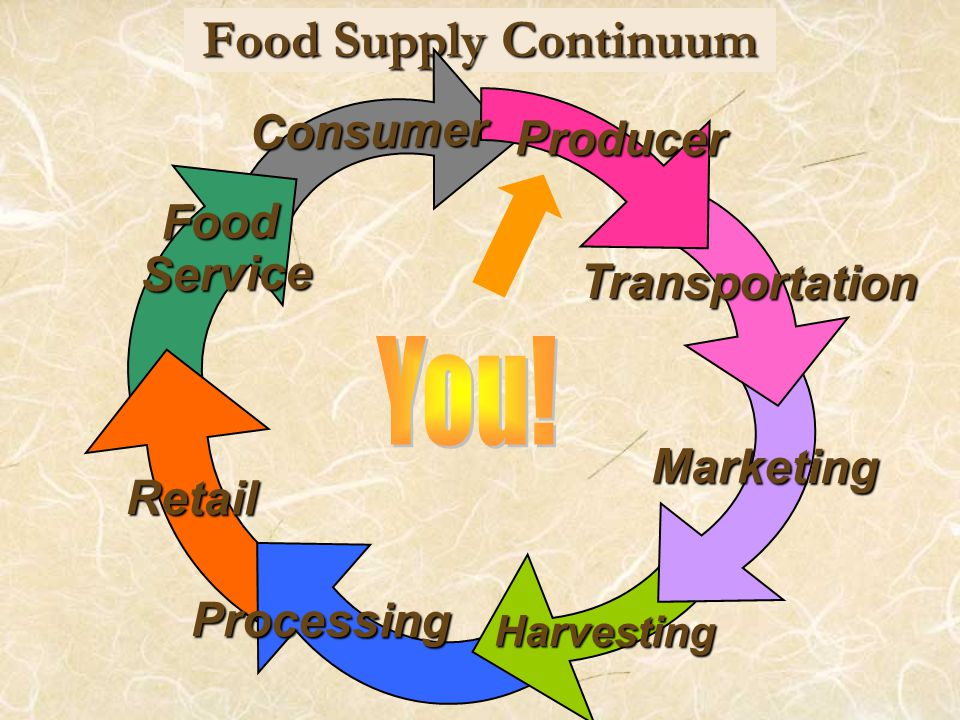 Food Supply Continuum Consumer Food Service Service Retail Processing Harvesting Marketing Transportation Producer