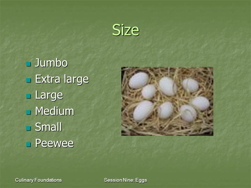Culinary FoundationsSession Nine: Eggs Size Jumbo Jumbo Extra large Extra large Large Large Medium Medium Small Small Peewee Peewee