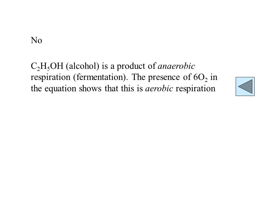 No C 2 H 5 OH (alcohol) is a product of anaerobic respiration (fermentation). The presence of 6O 2 in the equation shows that this is aerobic respirat