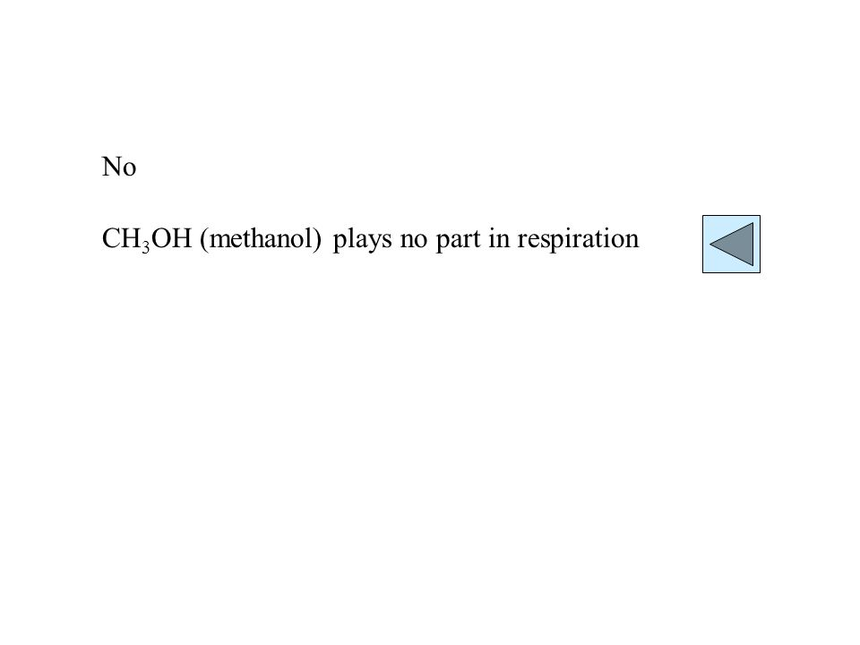 No CH 3 OH (methanol) plays no part in respiration