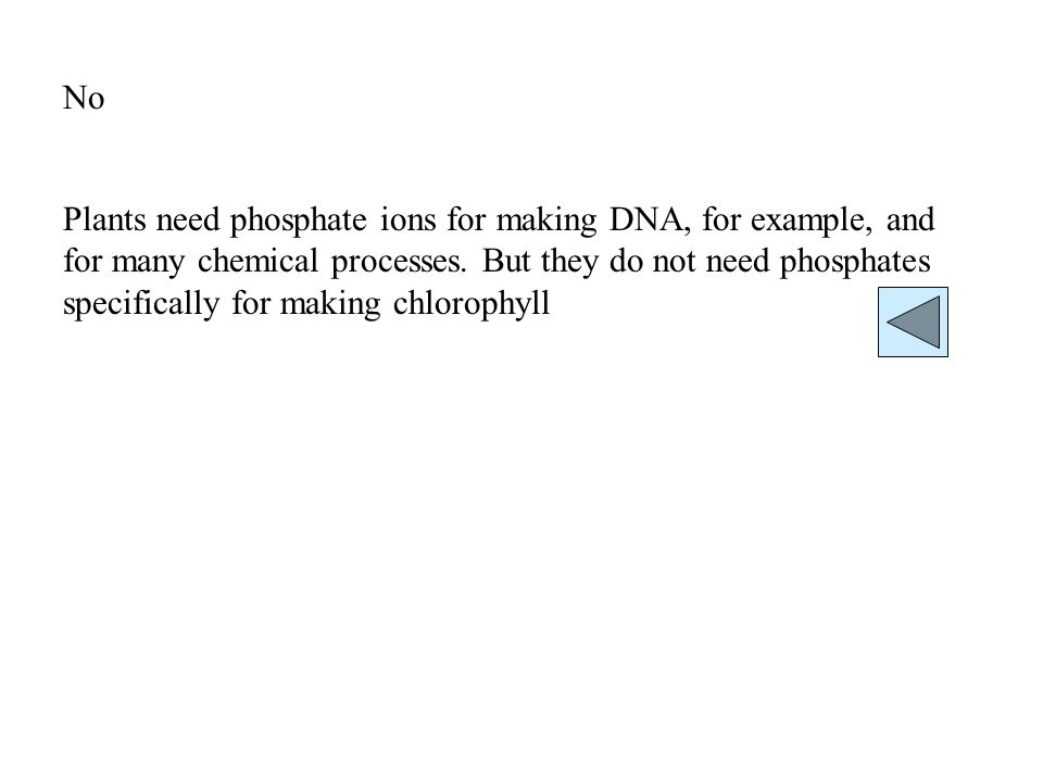 No Plants need phosphate ions for making DNA, for example, and for many chemical processes.