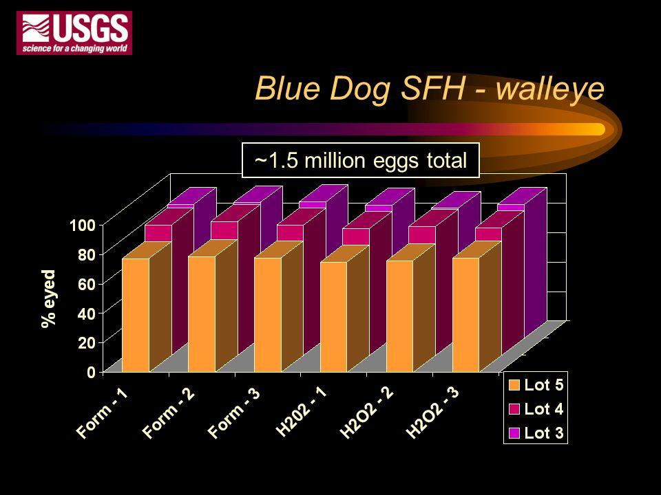 Blue Dog SFH - walleye ~1.5 million eggs total