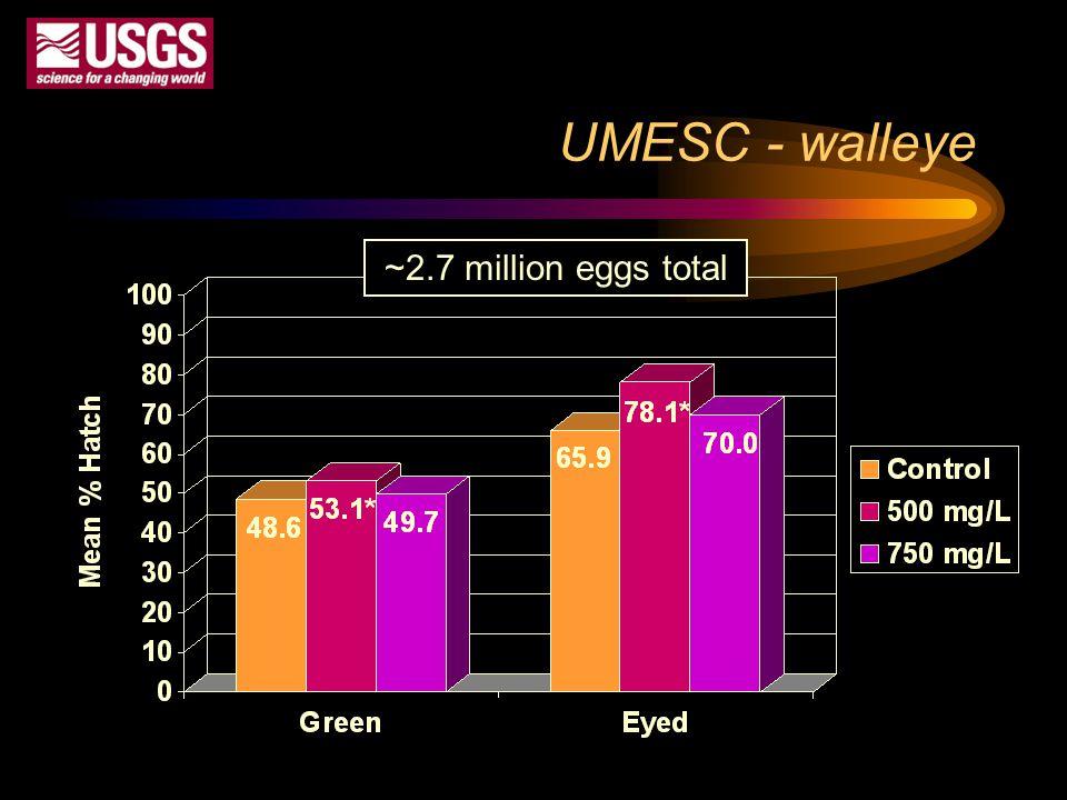 UMESC - walleye ~2.7 million eggs total