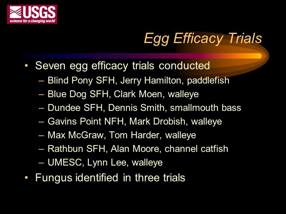 Egg Efficacy Trials Seven egg efficacy trials conducted –Blind Pony SFH, Jerry Hamilton, paddlefish –Blue Dog SFH, Clark Moen, walleye –Dundee SFH, De