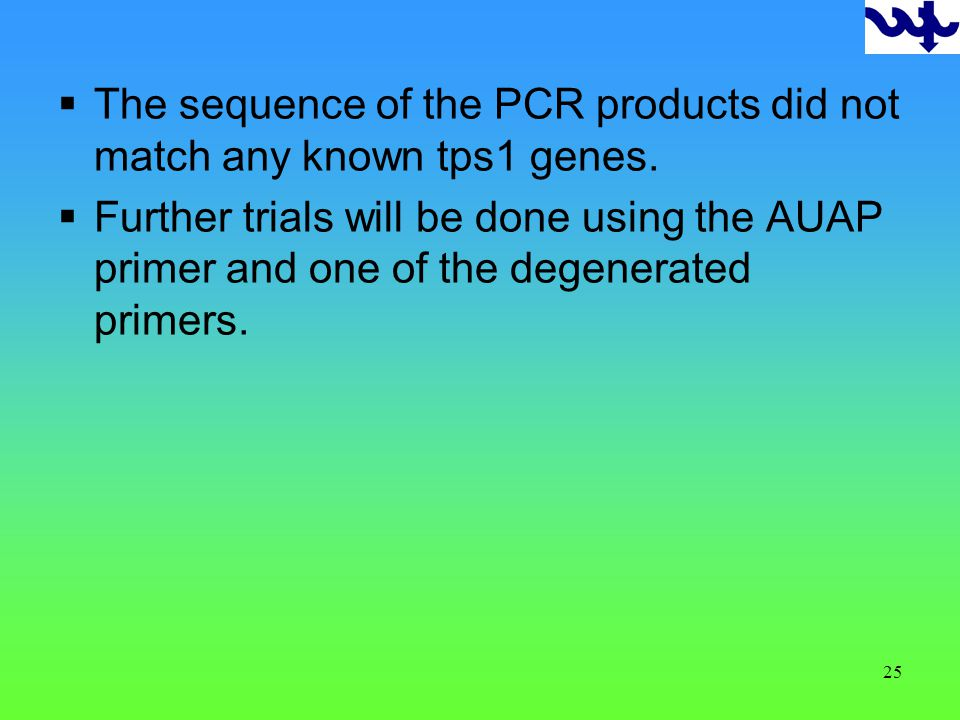 25 The sequence of the PCR products did not match any known tps1 genes.