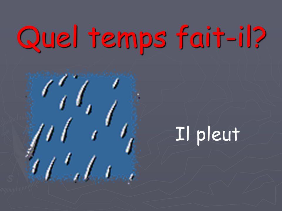 Il pleut Quel temps fait-il?
