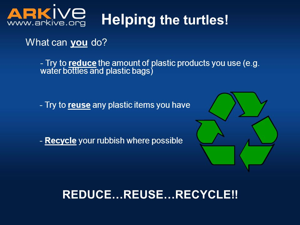 Helping the turtles! REDUCE…REUSE…RECYCLE!! What can you do? - Try to reduce the amount of plastic products you use (e.g. water bottles and plastic ba