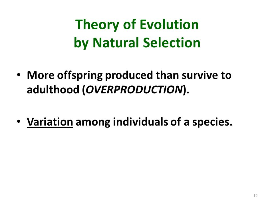 Theory of Evolution by Natural Selection More offspring produced than survive to adulthood (OVERPRODUCTION). Variation among individuals of a species.