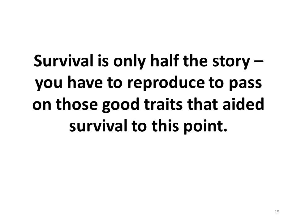 Survival is only half the story – you have to reproduce to pass on those good traits that aided survival to this point. 15
