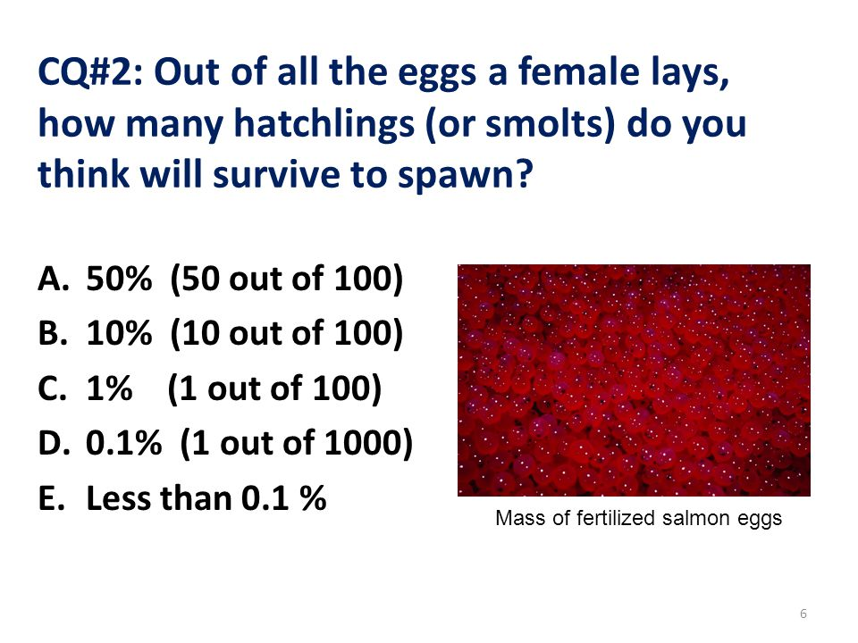 Fitness Value Example Dominant male phenotype produces 300 male offspring in the next generation.