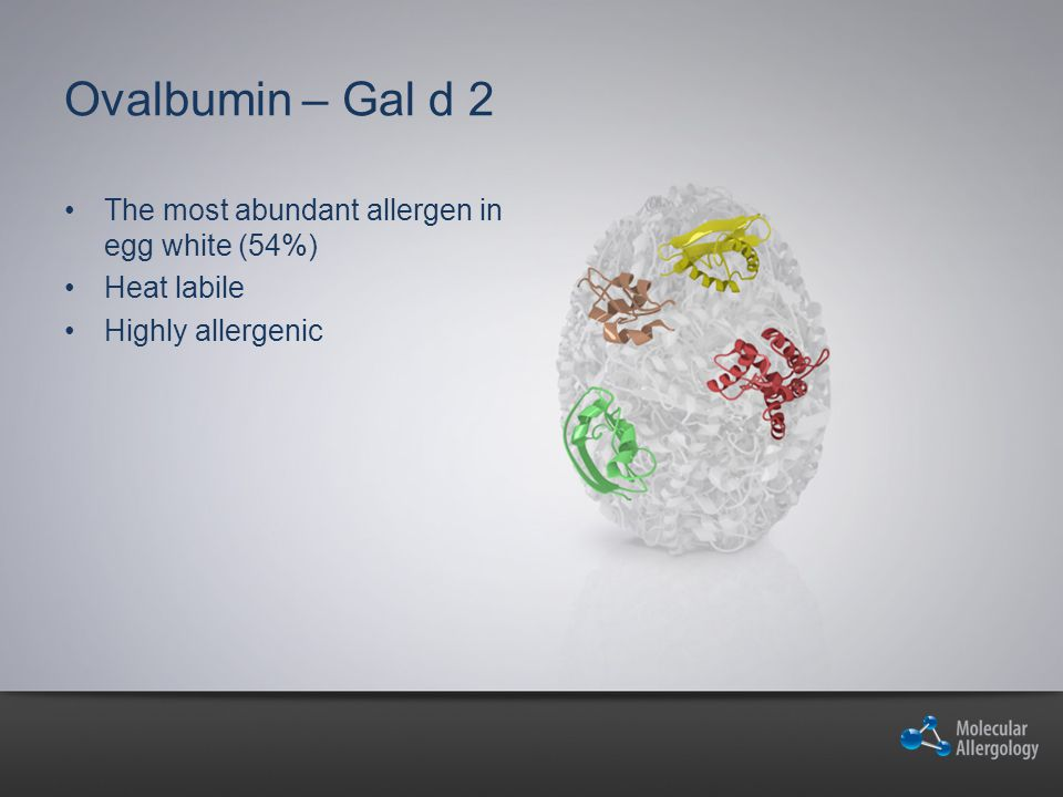 Ovalbumin – Gal d 2 The most abundant allergen in egg white (54%) Heat labile Highly allergenic