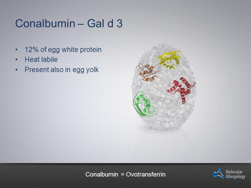 Conalbumin – Gal d 3 12% of egg white protein Heat labile Present also in egg yolk Conalbumin = Ovotransferrin