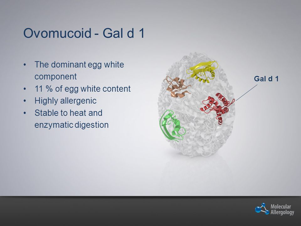 Ovomucoid - Gal d 1 The dominant egg white component 11 % of egg white content Highly allergenic Stable to heat and enzymatic digestion Gal d 1