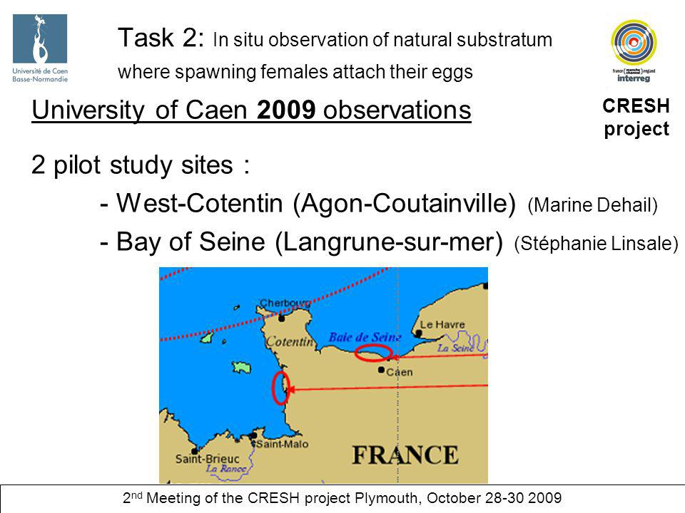 CRESH project 2 nd Meeting of the CRESH project Plymouth, October Task 2: In situ observation of natural substratum where spawning females attach their eggs University of Caen 2009 observations 2 pilot study sites : - West-Cotentin (Agon-Coutainville) (Marine Dehail) - Bay of Seine (Langrune-sur-mer) (Stéphanie Linsale)