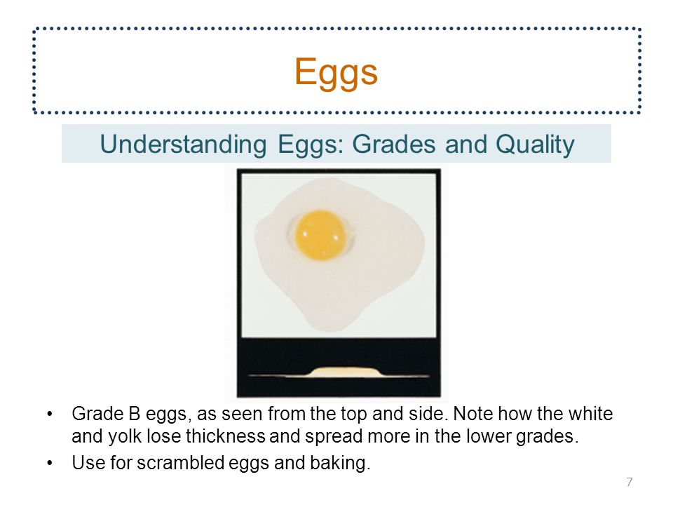 Grade B eggs, as seen from the top and side.