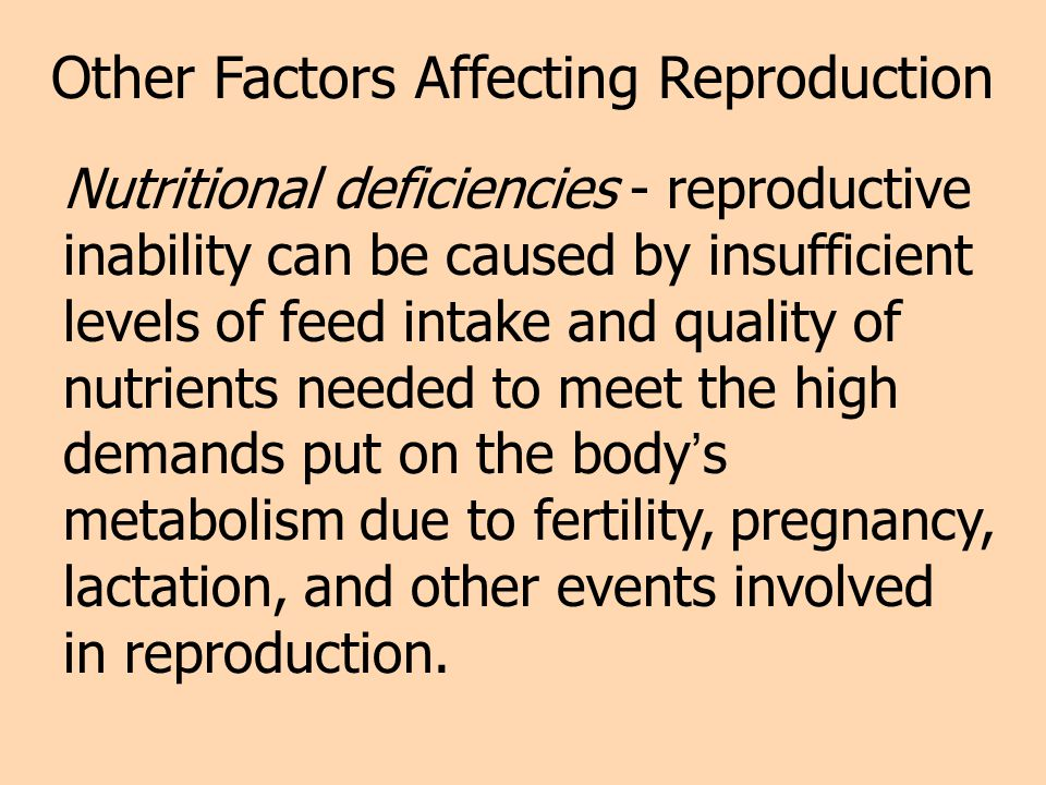 Other Factors Affecting Reproduction Nutritional deficiencies - reproductive inability can be caused by insufficient levels of feed intake and quality