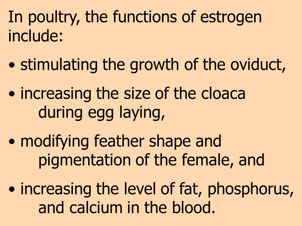 In poultry, the functions of estrogen include: stimulating the growth of the oviduct, increasing the size of the cloaca during egg laying, modifying f