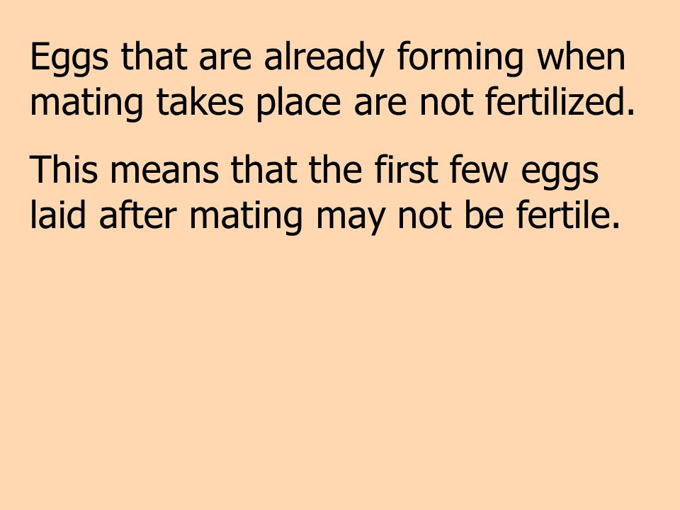 Eggs that are already forming when mating takes place are not fertilized. This means that the first few eggs laid after mating may not be fertile.