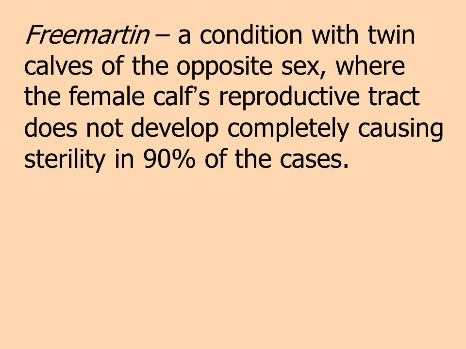 Freemartin – a condition with twin calves of the opposite sex, where the female calf s reproductive tract does not develop completely causing sterilit