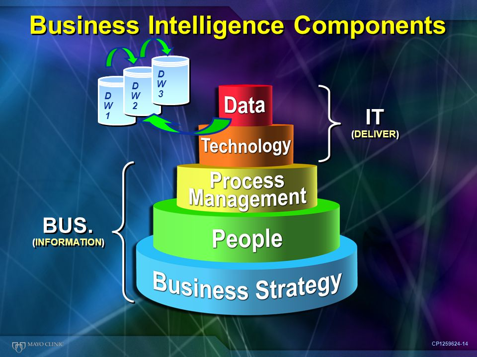Business Intelligence Components CP1259624-14 IT (DELIVER) IT (DELIVER) BUS.