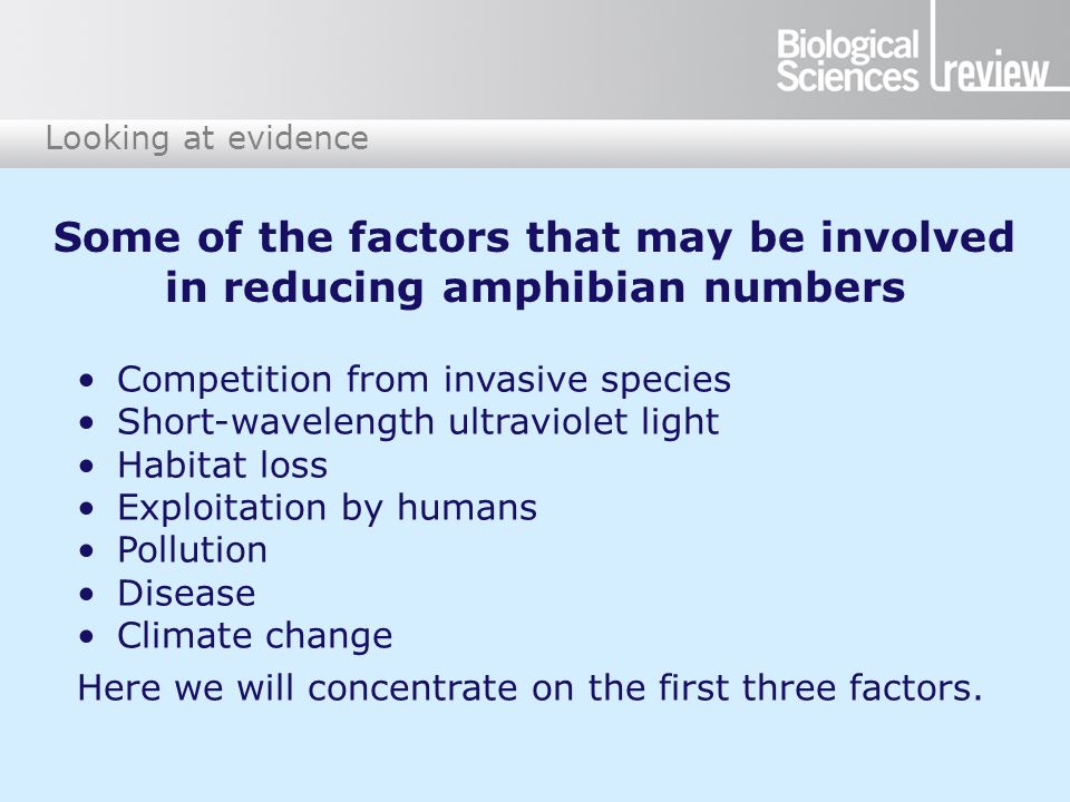 Looking at evidence Competition from invasive species Short-wavelength ultraviolet light Habitat loss Exploitation by humans Pollution Disease Climate change Here we will concentrate on the first three factors.