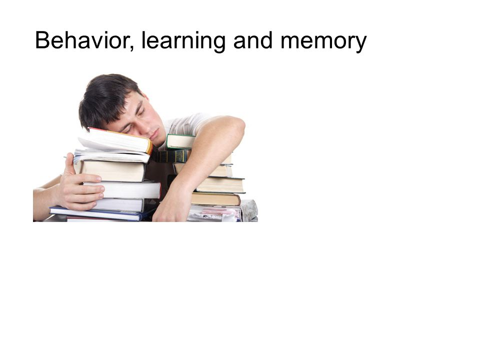 Behavior, learning and memory