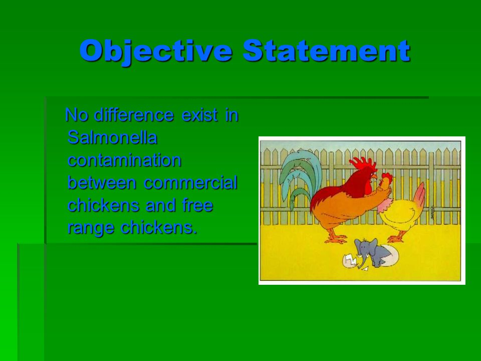 Objective Statement No difference exist in Salmonella contamination between commercial chickens and free range chickens.