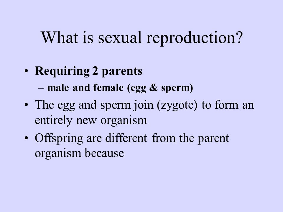 What is sexual reproduction? Requiring 2 parents –male and female (egg & sperm) The egg and sperm join (zygote) to form an entirely new organism Offsp