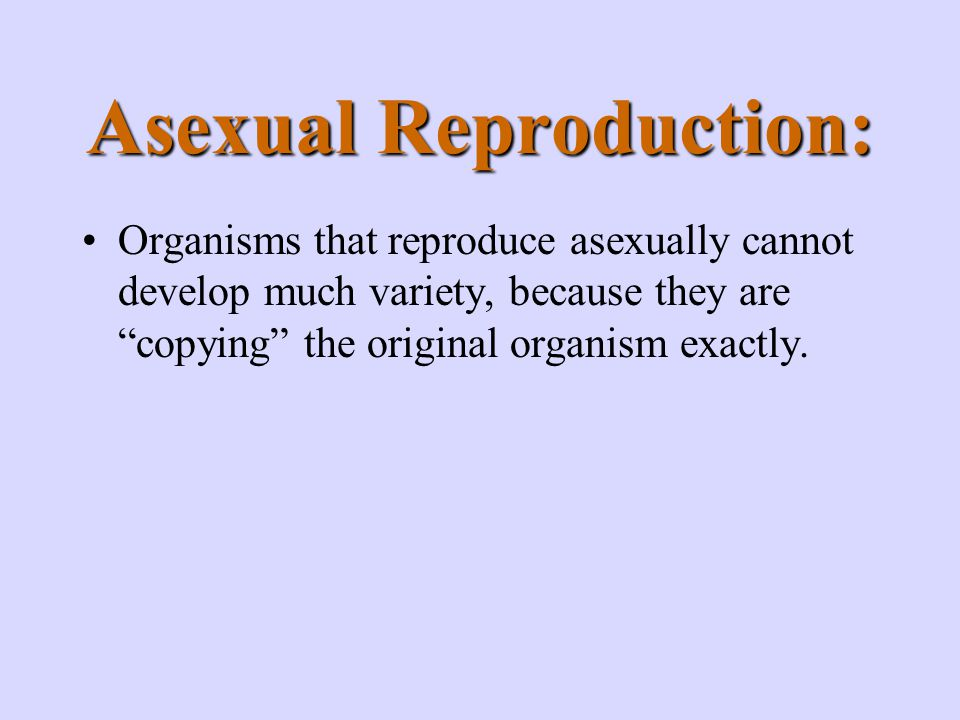 Asexual Reproduction: Organisms that reproduce asexually cannot develop much variety, because they are copying the original organism exactly.
