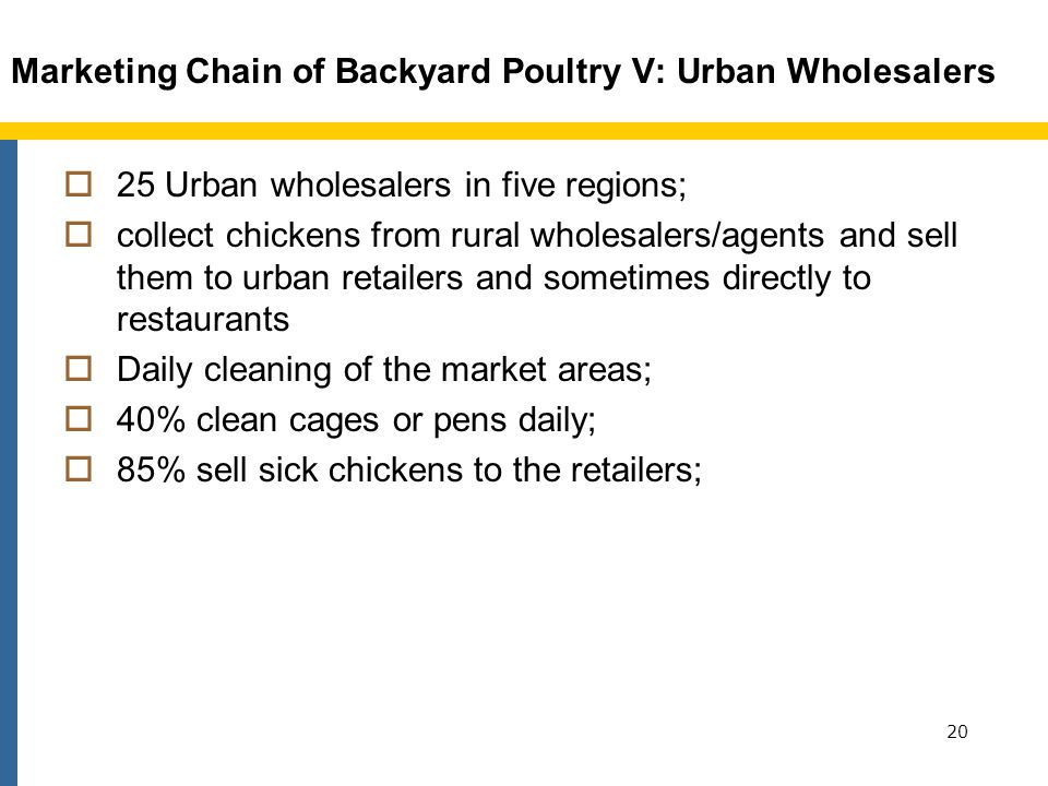 Marketing Chain of Backyard Poultry V: Urban Wholesalers 25 Urban wholesalers in five regions; collect chickens from rural wholesalers/agents and sell them to urban retailers and sometimes directly to restaurants Daily cleaning of the market areas; 40% clean cages or pens daily; 85% sell sick chickens to the retailers; 20