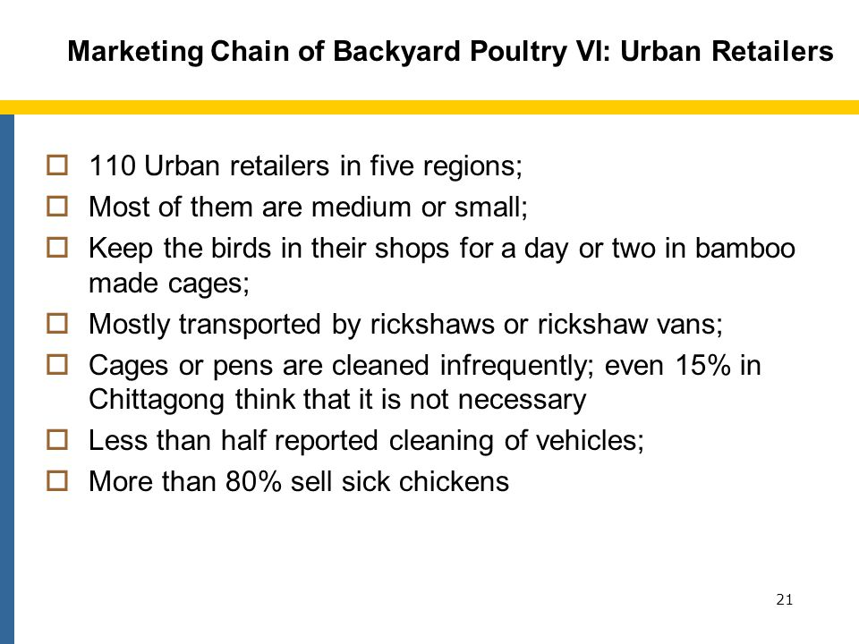 Marketing Chain of Backyard Poultry VI: Urban Retailers 110 Urban retailers in five regions; Most of them are medium or small; Keep the birds in their shops for a day or two in bamboo made cages; Mostly transported by rickshaws or rickshaw vans; Cages or pens are cleaned infrequently; even 15% in Chittagong think that it is not necessary Less than half reported cleaning of vehicles; More than 80% sell sick chickens 21