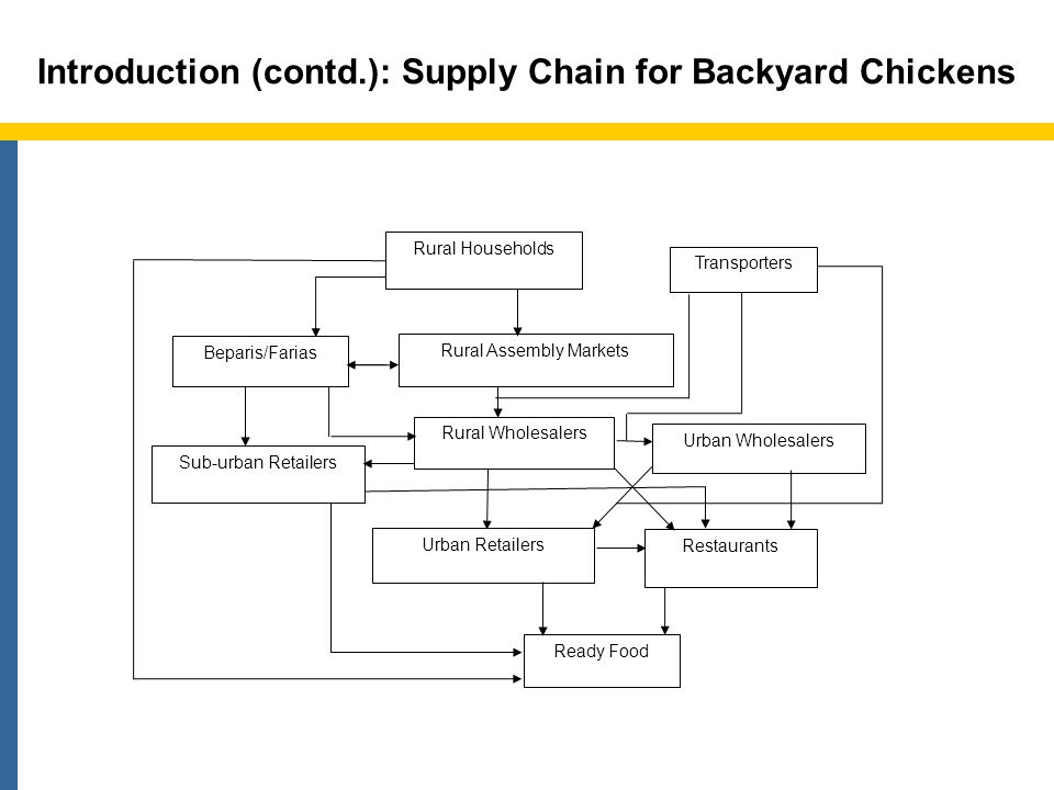 Literature Review 4 No integrated supply chain analysis of poultry.
