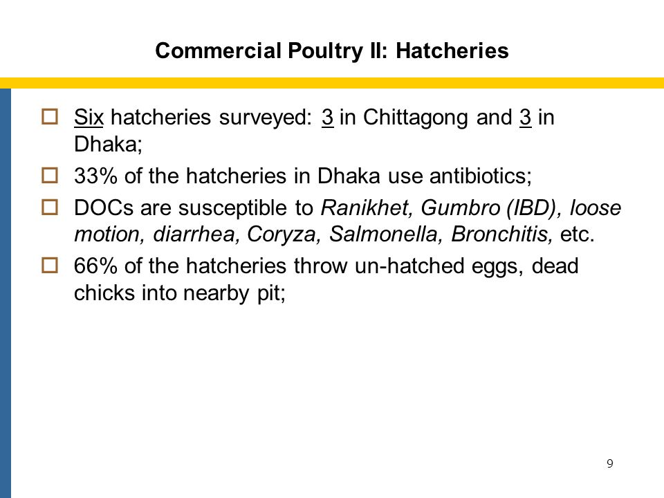 Commercial Poultry III: Broiler Farms 50 commercial broiler farms in Chittagong, Comilla, Dhaka, Dinajpur, and Jessore surveyed; Hardly have any No Admittance sign posted; 50% of the farms in Chittagong and Jessore and 10% in Dinajpur are visited by migratory birds; Have no designated area for loading or unloading; 10