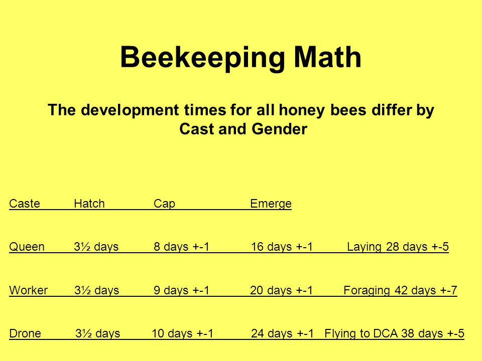 Beekeeping Math The development times for all honey bees differ by Cast and Gender Caste Hatch Cap Emerge Queen 3½ days 8 days +-1 16 days +-1 Laying