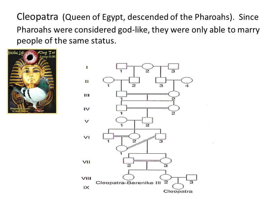 Cleopatra (Queen of Egypt, descended of the Pharoahs). Since Pharoahs were considered god-like, they were only able to marry people of the same status